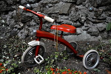 Close-up Of Red Bicycle In Yard
