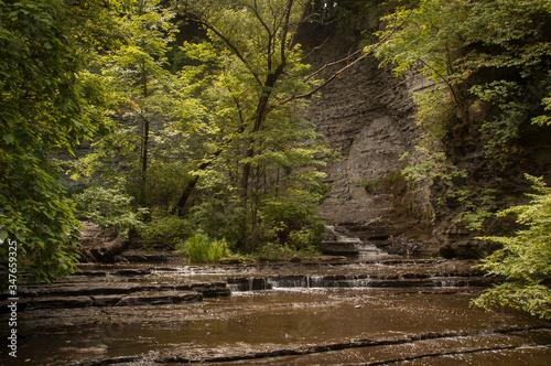 Fotografie, Obraz Stream Flowing Through Rocks In Forest