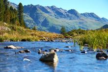 Ducks On Lake Against Mountains