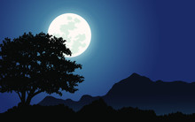 Night Landscape With Moon
