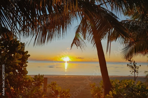 Beautiful shot of tropical Maldives beach with palm trees at sunset in Baa Atoll Canvas Print