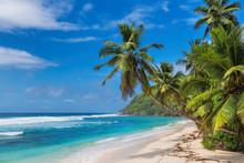 Tropical Sunny Paradise Beach. Summer Vacation And Tropical Beach Concept.