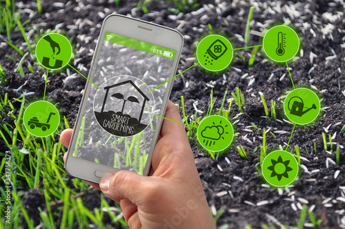 Fotomural Smartphone with smart farming and smart gardening apps in front of grass seeds