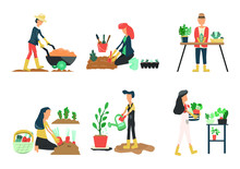People Gardening. Man And Woma...