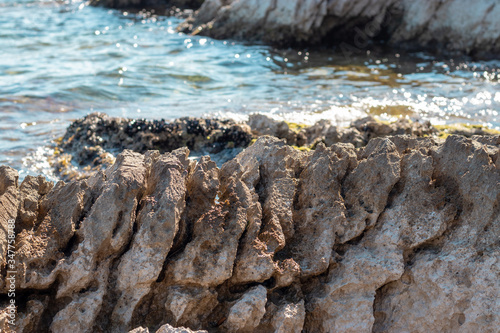 Fototapeta Close view of a serrated sharp rock on the shore of adriatic sea