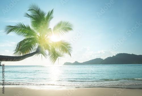 Fotobehang - sunset on the beach, Mahe island, Seychelles