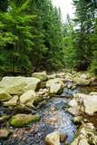 Potok strumień Sudety Karpacz Śnieżka góry
