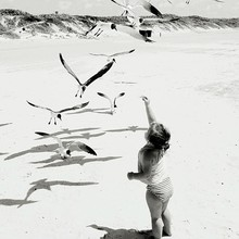 Rear View Of Baby Girl Watching At Seagulls On Sunny Day