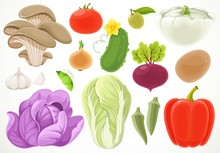 Set Of Different Vegetables Isolated On A White Background