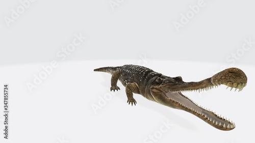 Fotografie, Tablou 3d illustration of sarcosuchus