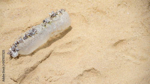 Photo Marine pollution concept