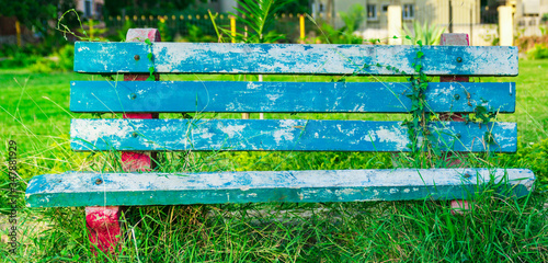 the bench with the garden backside Canvas Print
