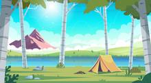 Summer Landscape With Birch Tr...