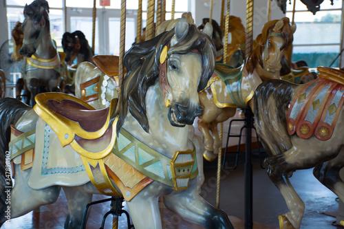 merry go round horse Canvas-taulu