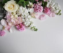 White, Cream, Pink Flowers On ...