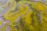 Aerial of Strange Green Waterways in SF Bay Marshland