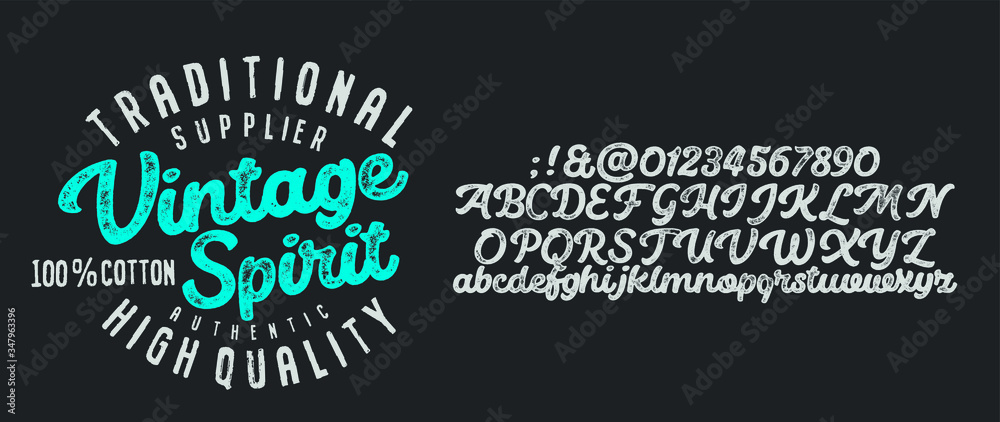 Fototapeta  Vintage Brush Script Modern Alphabet. Retro Typeface. Letters.Vector Alphabet. Exclusive Custom Letters. Vector illustration.
