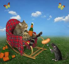 The Beige Cat In A Rocking Cha...