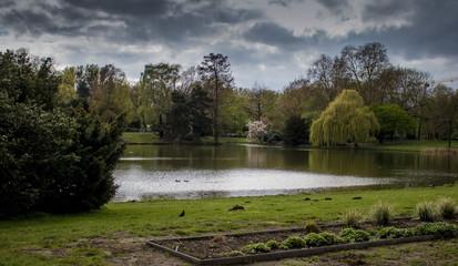 Fototapeta na wymiar Scenic View Of Lake By Trees Against Sky