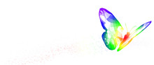 Illustration White Background Rainbow Butterfly Transform Liberate Human Right Of LGBT Freedom Concept. Proud And Love To Be. To Celebrate Gay Pride, Coming Out Of True Gender And Sexuality Equality