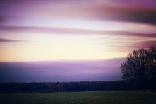 Purple Clouds Over Field At Dawn