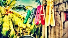 Colorful Clothespins On String In Backyard