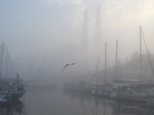Sailboats Moored In Harbor Against Sky During Foggy Weather