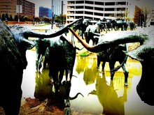 Buffalo Statues In Pond