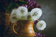 Beautiful Dandelion Bouquet In...