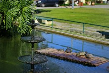 Close-up Of Water Fountain In Formal Garden
