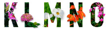 Floral Letters. The Letters K,...