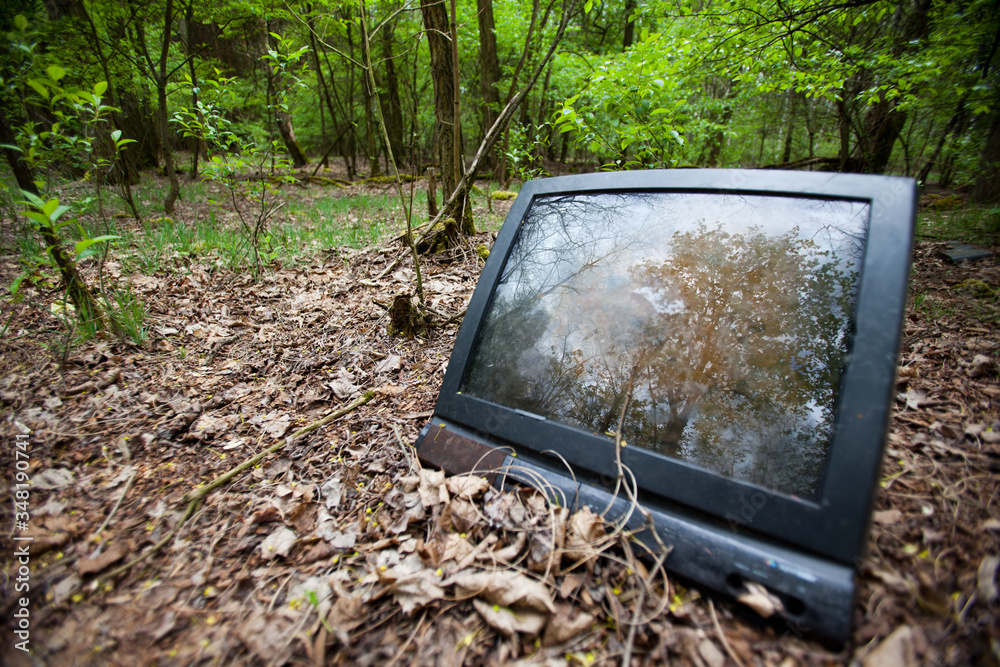Fototapeta Stary telewizor wyrzucony w lesie.