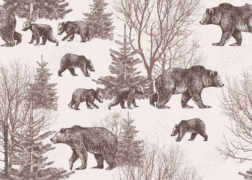 .Landscape with bears, cubs, winter trees and fir trees. Wildlife seamless patte Canvas Print