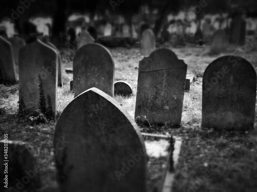 Canvas-taulu View Of Tombstones