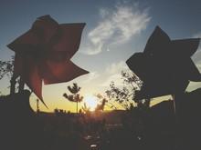 Pinwheels Against Plants During Sunset