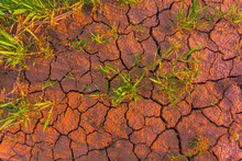 Cracked Earth, Metaphoric For Climate Change And Global Warming
