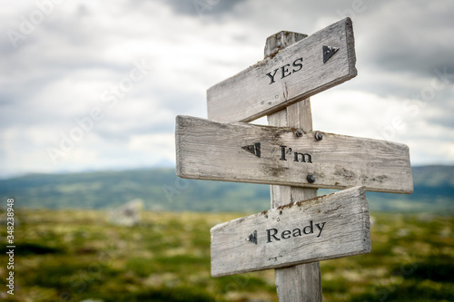Valokuva yes im ready text engraved on old wooden signpost outdoors in nature