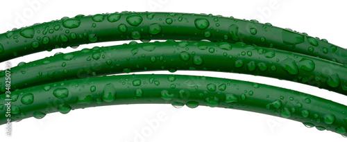 Leinwand Poster Three green wet plastic arcs of garden hose isolated on white background