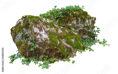 Cut out mossy rocks Wallpaper Mural