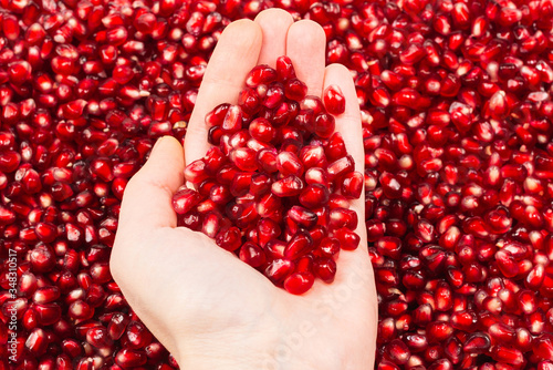 Red juicy pomegranate seeds in woman hand. - 348310517