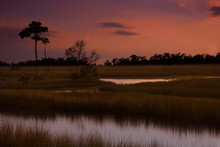 Sun Setting Over Marsh Land In Northern Florida