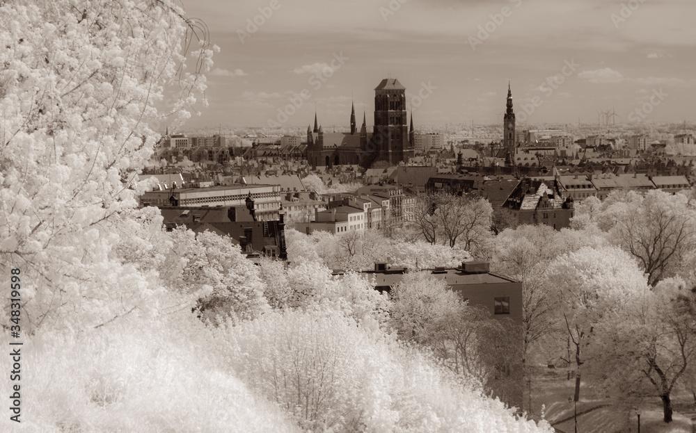 Fototapeta Old Town of Gdansk. View from fortress of Gora Gradowa. Green vegetation in infrared. - obraz na płótnie