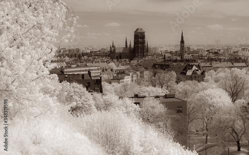 Fototapeta Old Town of Gdansk. View from fortress of Gora Gradowa. Green vegetation in infrared. obraz na płótnie