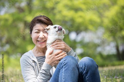 Fototapeta ペットの犬と女性