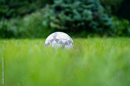 balon de futbol blanco y negro estandar en un jardin con alto cesped natural ver Wallpaper Mural