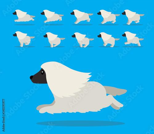 Photo Animal Animation Sequence Dog Afghan Hound Cartoon Vector