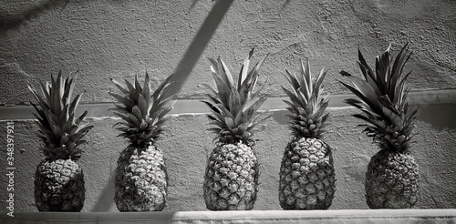 Fototapety, obrazy: Pineapples In Row