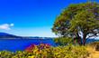 Leinwandbild Motiv Nanaimo landscape