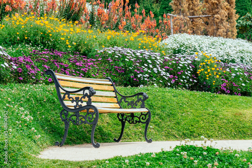 Fototapety, obrazy: Empty single wooden seat in forest woodlands at summer weather sunshine