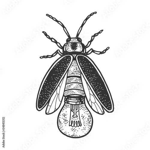 Photographie Firefly insect beetle with lamp bulb sketch engraving vector illustration